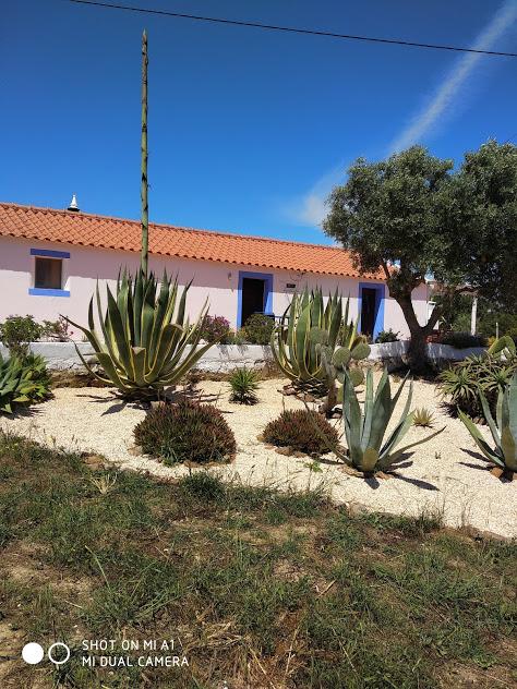 Traditioneel vakantiehuis  Vrijstaand huis gelegen in Aljezur midden in het natuurgebied Costa Vicentina. Vanuit het huis heeft u prachtige vergezichten op het gebergte van Monchique. Het strand van Amoreira en het centrum van Aljezur zijn op 4km afstand en niet ver van de andere stranden van Aljezur.  Het huis dat is gebouwd in de stijl van een Algarviaans boerenhuis, is gemeubileerd, met:   Zit- en eetkamer met open keuken,  2 slaapkamers, 1 met een tweepersoonsbed en 1 met 2 ��npersoonsbed (lits-jumeaux) + een slaapbank in de zitkamer.  Open haard  Centrale verwarming.(optioneel)  Badkamer met ligbad.  Groot terras met barbeque en een op hout gestookte oven.  Totaal grondoppervlakte is 6.000m2.  Maximum aantal personen = 4 (inclusief kinderen boven de 4 jaar).   Bij reservering 25% van het totaal, de resterende bedrag 20 dagen voor de startdatum. Verhuur van zaterdag tot zaterdag.    Speciale winterprijzen bij lange perioden.